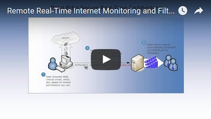 Remote Realtime Internet Monitor Video